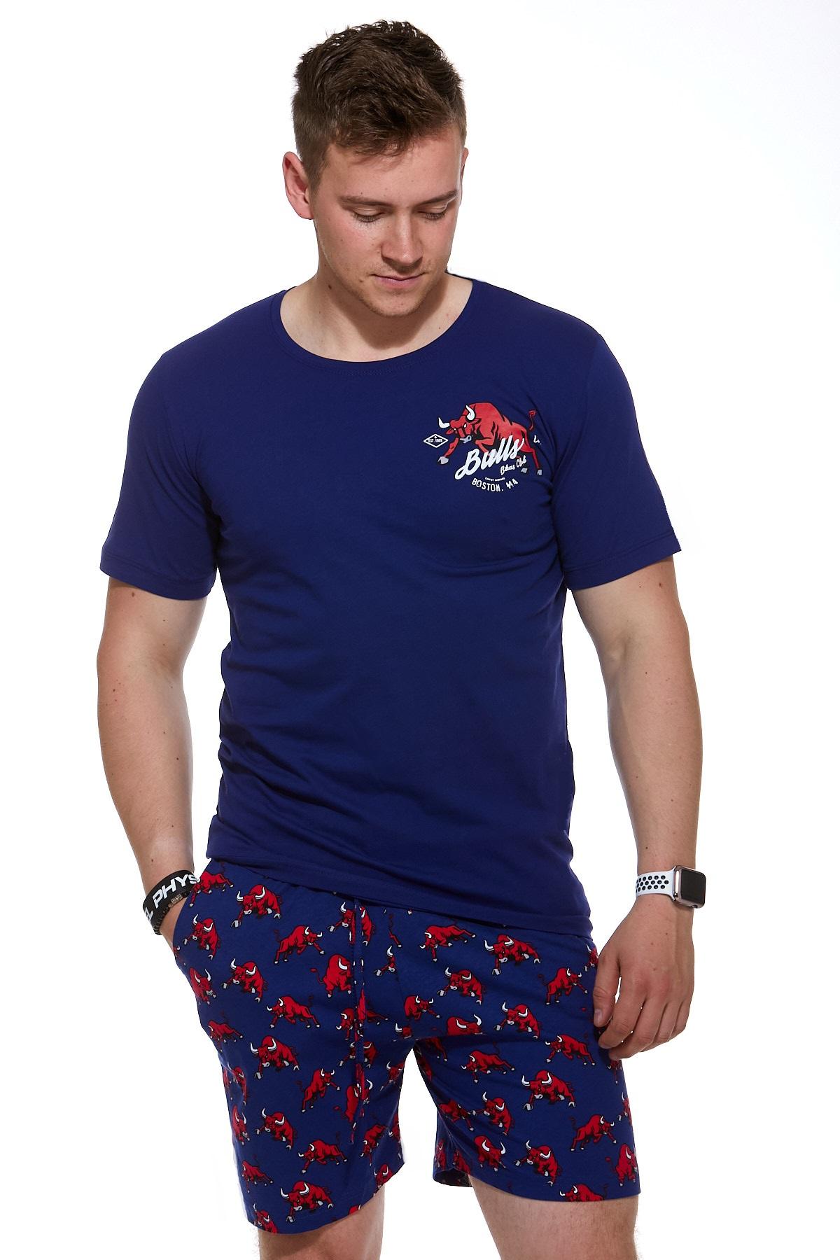 Pánské pyžamo  1P0855