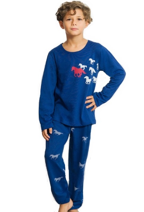 Chlapecké pyžamo Koňské 1F0564